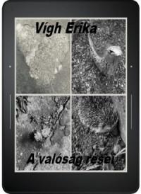 Vígh Erika - A valóság rései